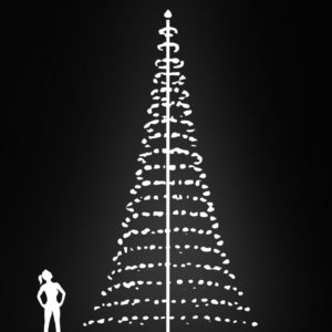 vlaggenmast kerstverlichting 8 meter